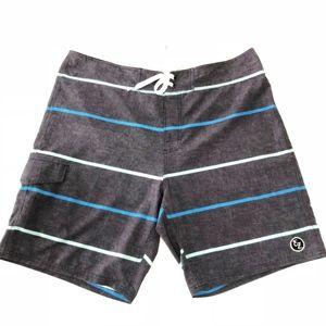 Ezekiel Blueish Gray Striped Board Shorts